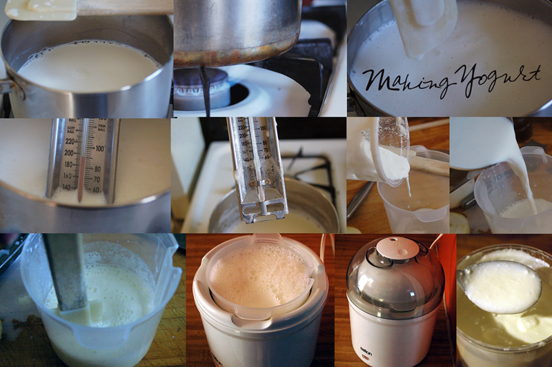 Make Yogurt // Se Prepara el Yogur
